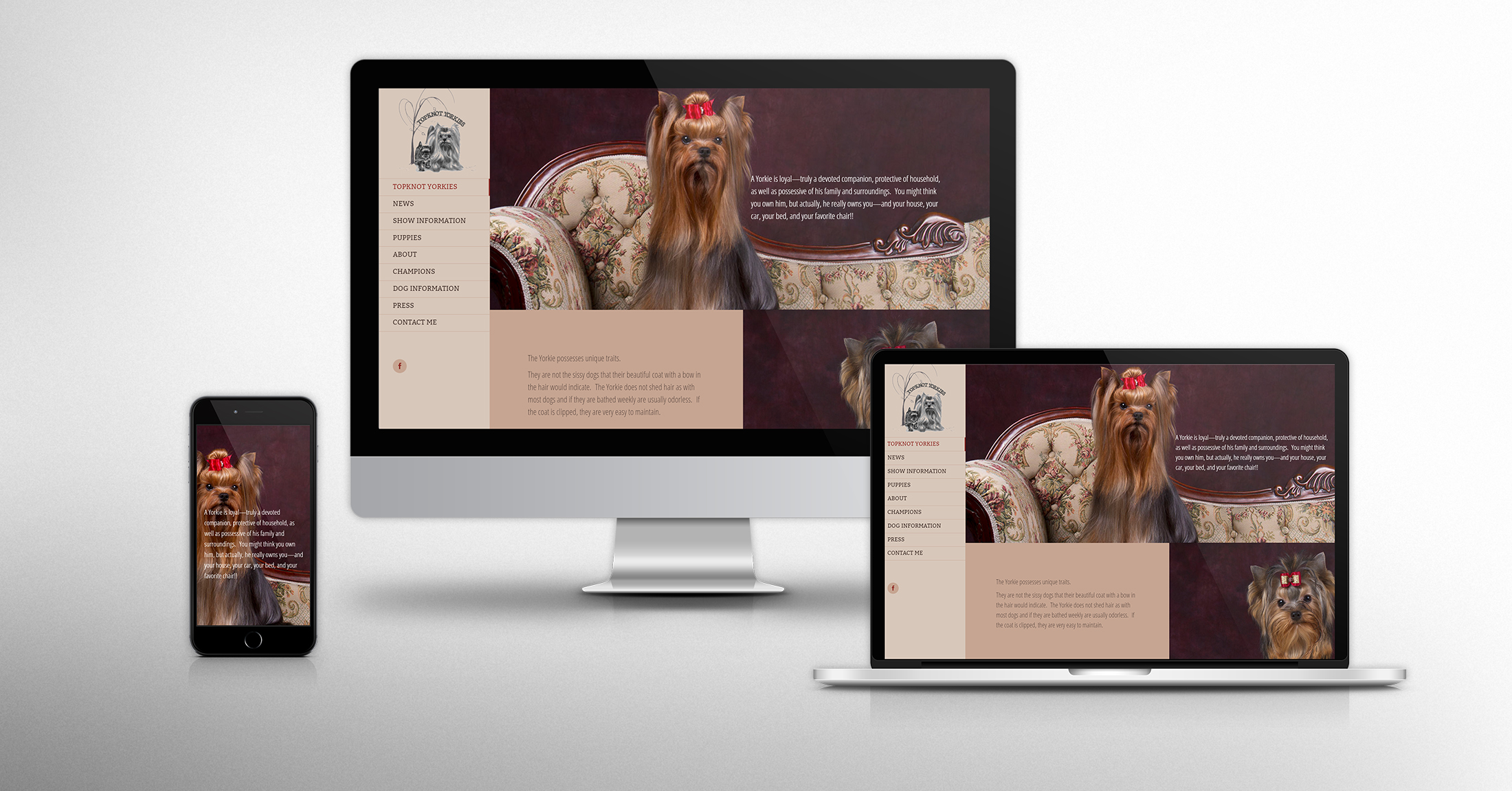 Website Design & Development for Topknot Yorkies - Tracy